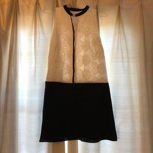 Loft shift dress (brand new)